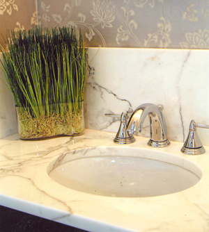Sink with Honed Statuary Marble